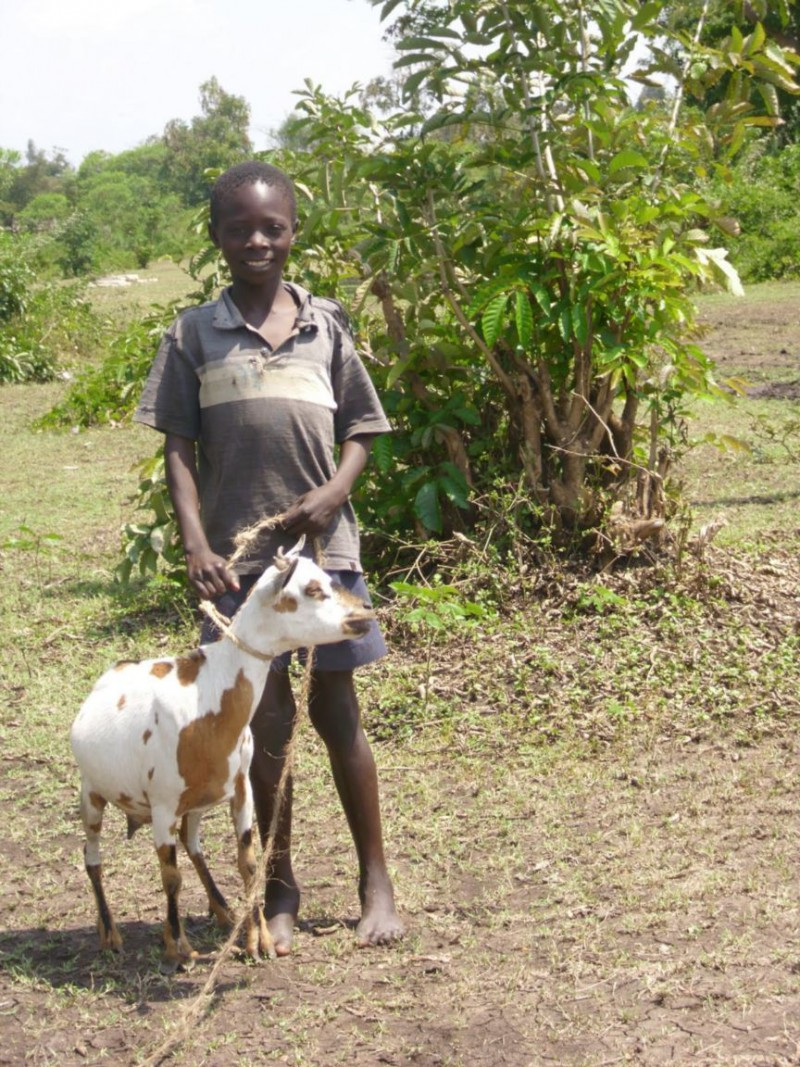 -niño con-cabra-kisumu-kenya + 1152_12935841972-tpfil02aw-2882