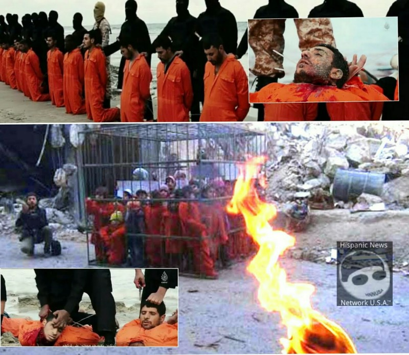 ISIS beheadings and children in cages 2015-791234