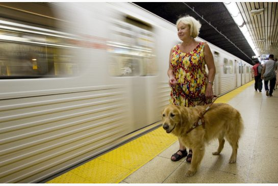 Kaye Leslie and her guide dog Jordan