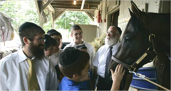 Students from Maimonides Hebrew Day School in Albany visiting Maimonides, a colt named for a Jewish philosopher.