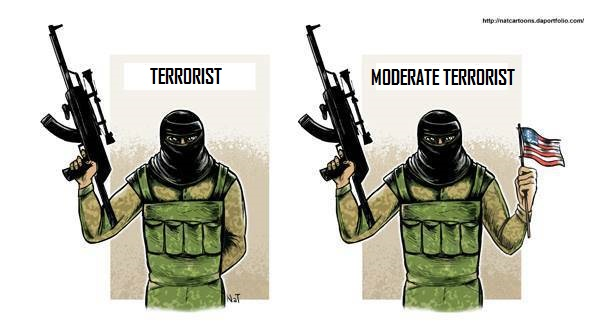 terroristandmoderateterrorists-vi