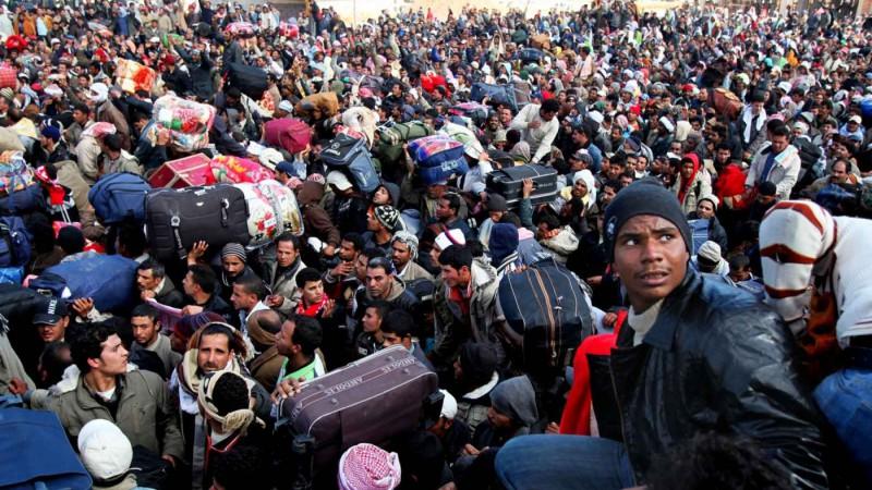 migrants1_1-vi