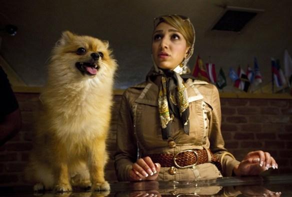 110713-iran-dogs3-10a-photoblog900