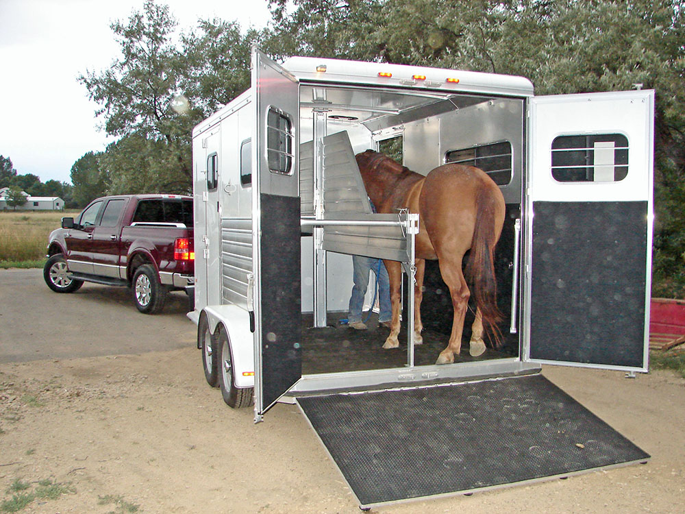 Typical one or two horse trailer