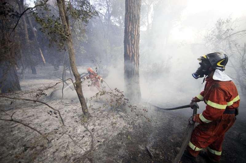 Irakees sticht bosbrand
