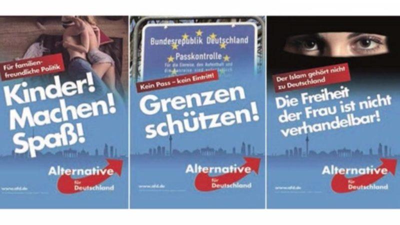 Image result for primarias partidos en alemania