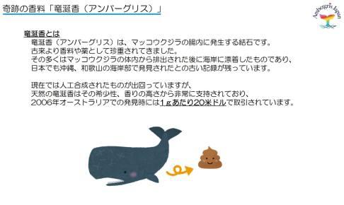 アンバーグリスジャパンの資料