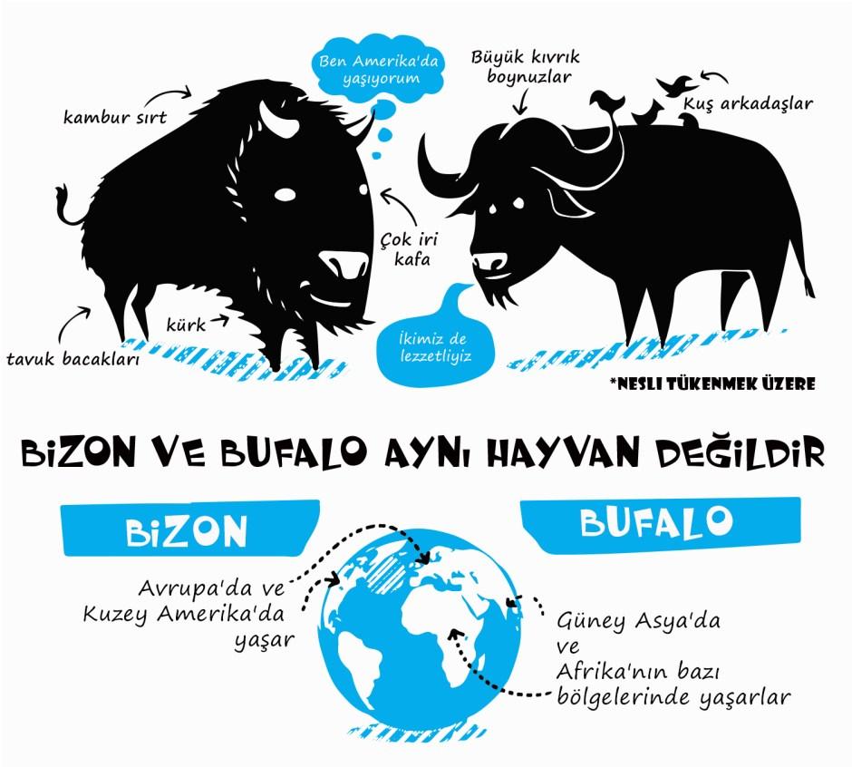 bizon_ve_bufalo_yazili