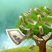 ESTATE PLANNING IN FREDERICK, MARYLAND: UNDERSTANDING A LIVING TRUST CASH TREE