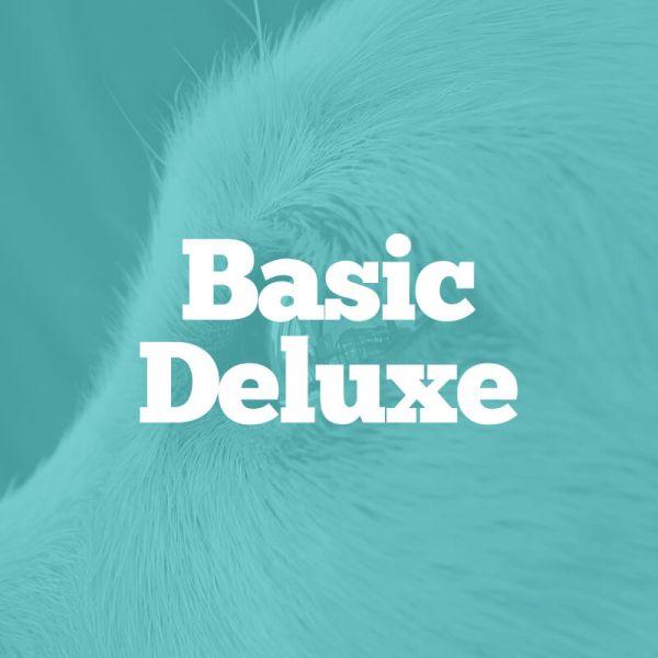 basic-deluxe