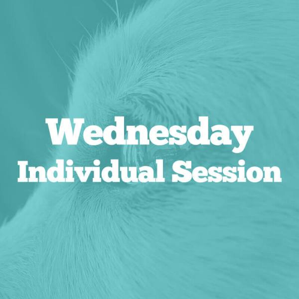 wednesday-session