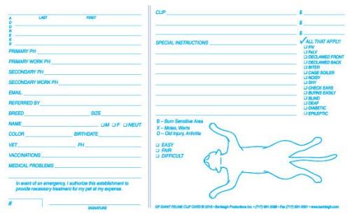 Giant Feline Clip Card