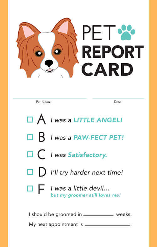 Modern - Pet Report Cards