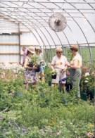 garden party 2010 3
