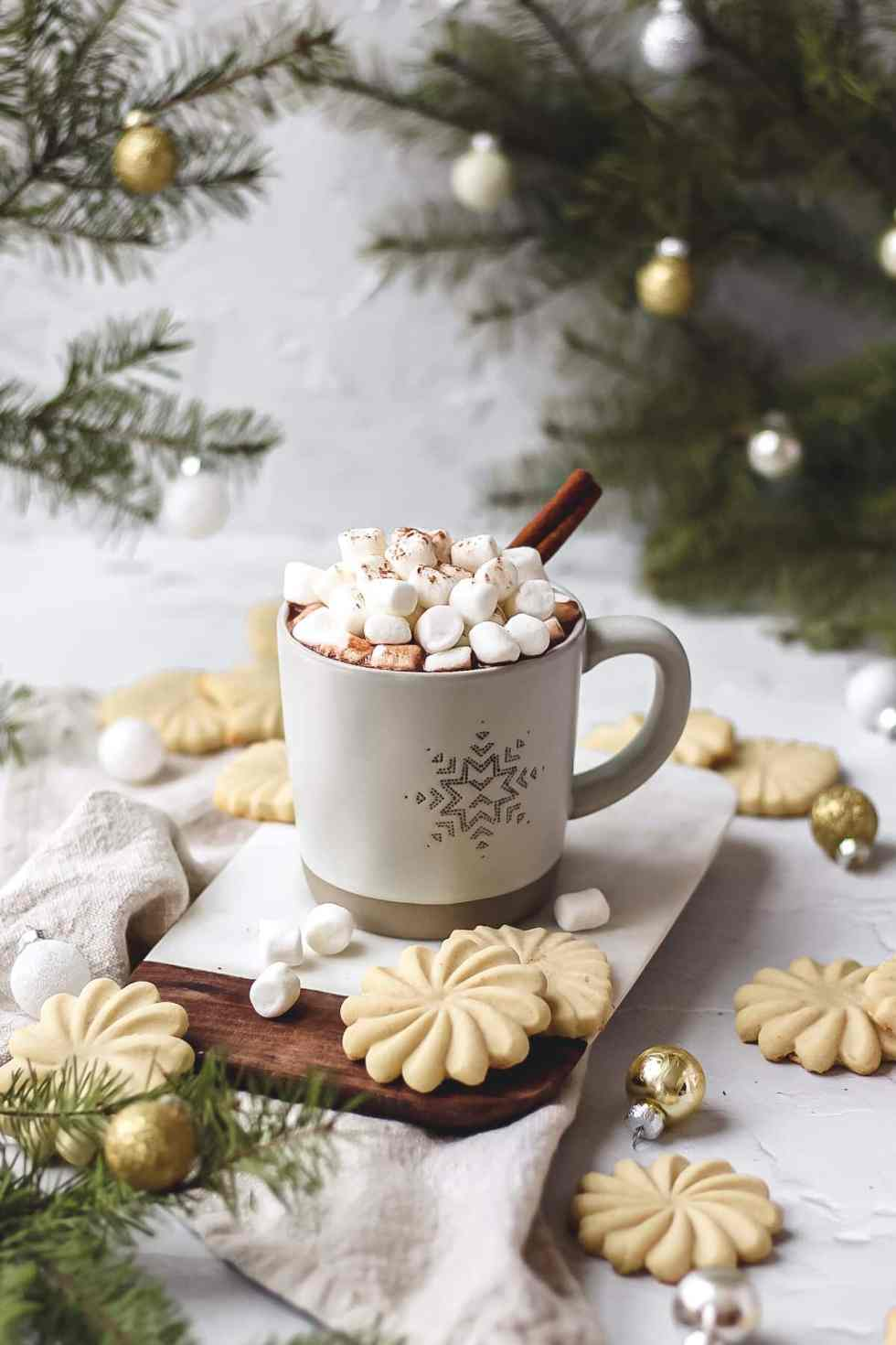 homemade cinnamon hot chocolate with marshmallows