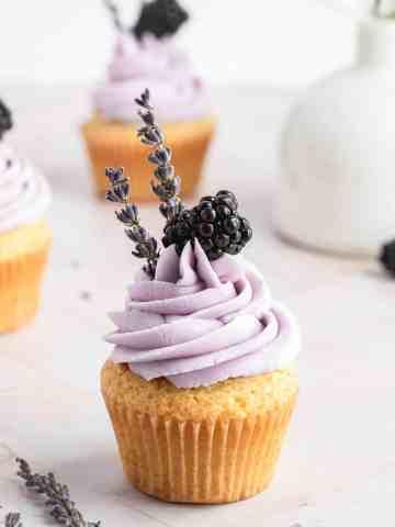 blackberry lavender cupcakes close up