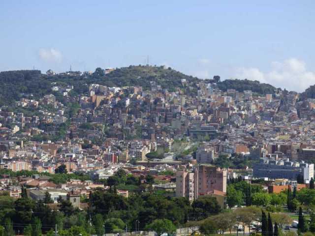 El Monte del Carmel al completo