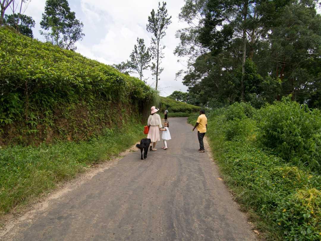 20160702-sri lanka-1002