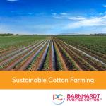 Sustainable Cotton Farming
