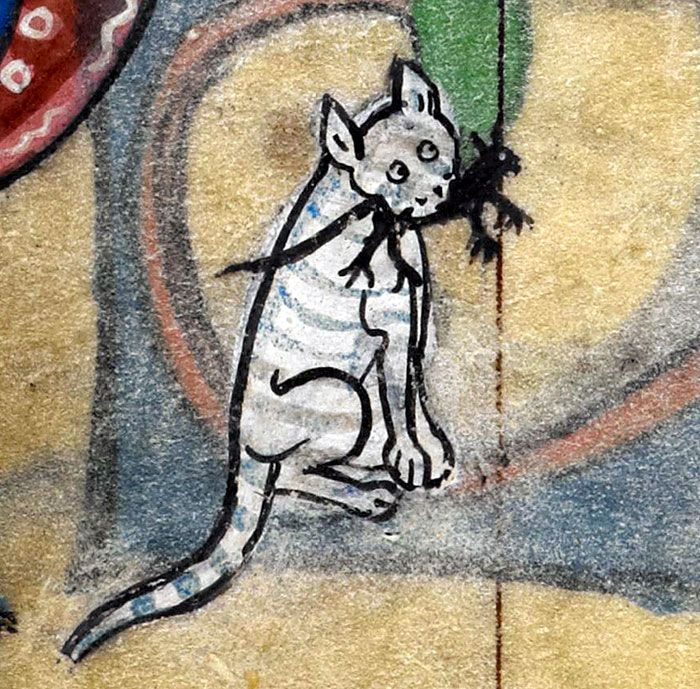 Medieval Cat Paintings Barnorama