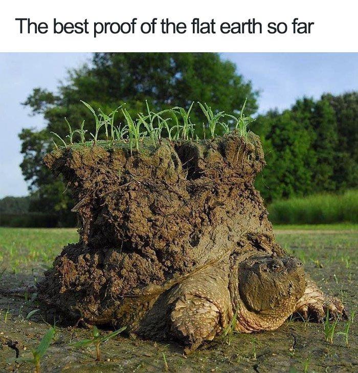 Cool Things Google Earth