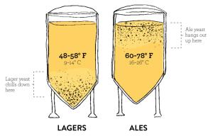 ALe-lager-bira-beer
