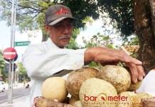 PENJUAL BUAH LANGKA: Muhammad Ali, penjual buah kinco. Buah yang sudah jarang ditemui hasil budidaya di kampung halamannya, Gresik. | Foto: Barometerjatim.com/WIRA HARLIJADI