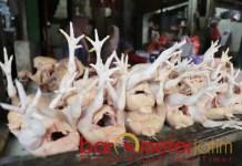 NAIK TINGGI: Harga daging ayam potong di pasar tradisional mengalami kenaikan cukup tinggi. | Foto: Barometerjatim.com/ARLANA CW