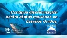 Continúa discriminación contra el atún mexicano en Estados Unidos.
