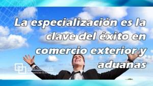 La especialización es la clave del éxito en comercio exterior y aduanas.