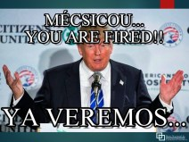 MEMES_mecsicou_fired