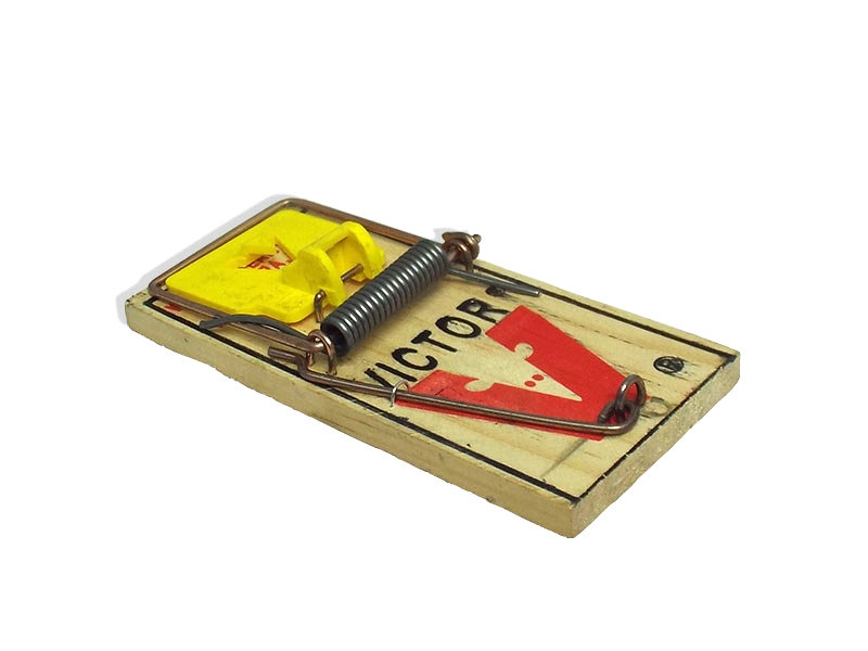 Little Victor Mouse Trap Barrettine Environmental Health