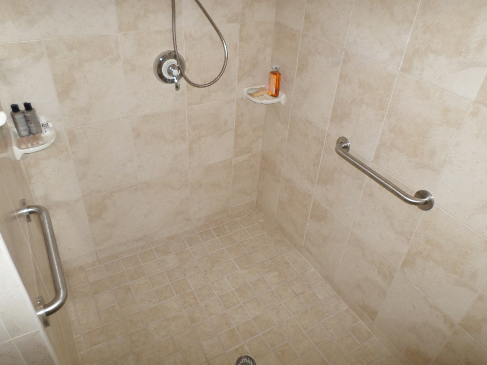 bathroom hand rails for handicapped