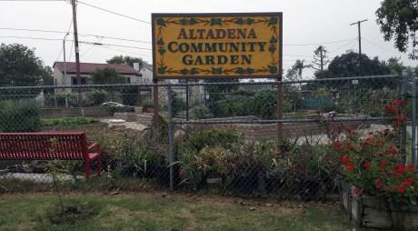 Altadena Community Garden next to Altadena Farmers Market