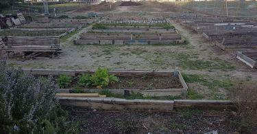 huerto urbano quinta de los molinos