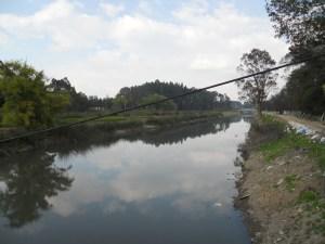 rio Bogotá