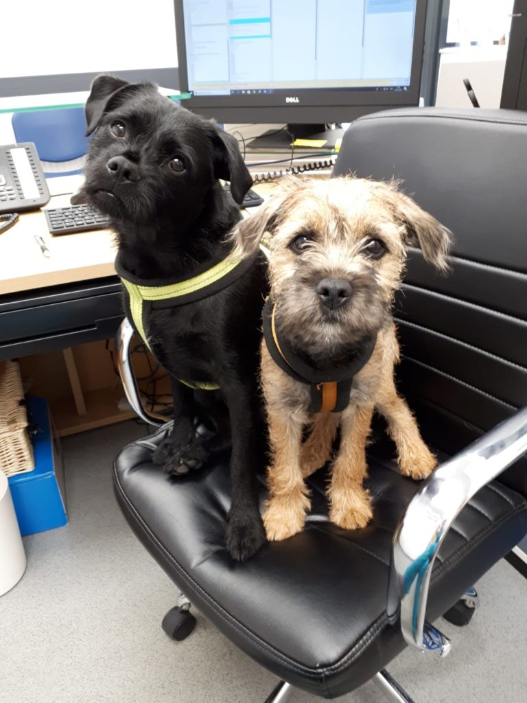Bert and Charlie