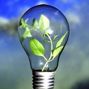 Green Energy efficient light bulb