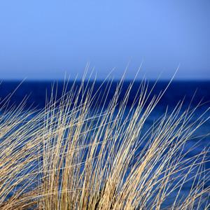 Lymington Solent and Grass