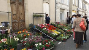 Marché aux fleurs 24 04 16 (22)