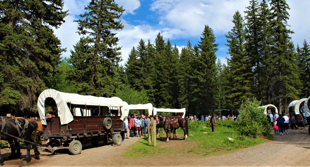 With the wagons circled, the guests climb off and head up to the chuck wagon dinner awaiting them.