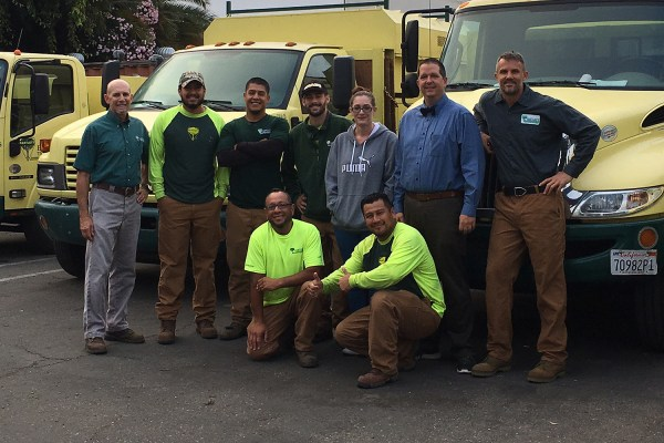 Bartlett Tree Experts: Tree Service and Shrub Care in ...