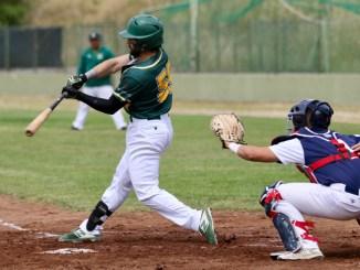 Massimo Testa (Montefiascone Baseball)
