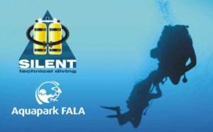 Darmowy kursy nurkowania na Fali