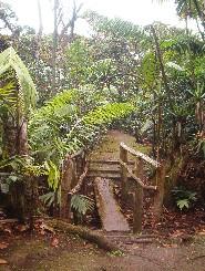 De finca (plantage)