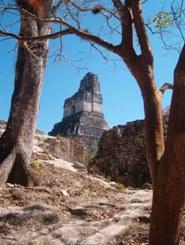 Templo I