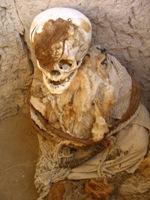 Nazca mummie met haarresten