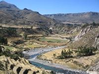 Uitzicht over oude Inca-terrasvelden