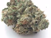 cannabis in Huntington Beach