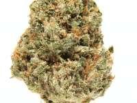 Best marijuana delivery